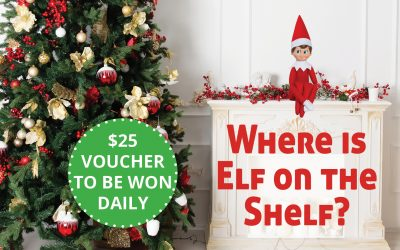 Find our Elf on the Shelf